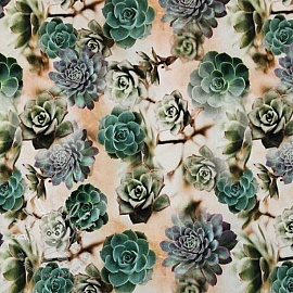 Jersey Sempervivum green digital print